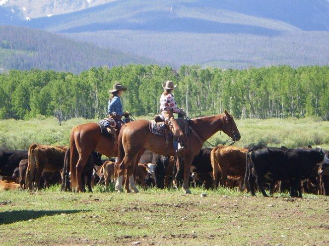 horseback-cass-grown-up
