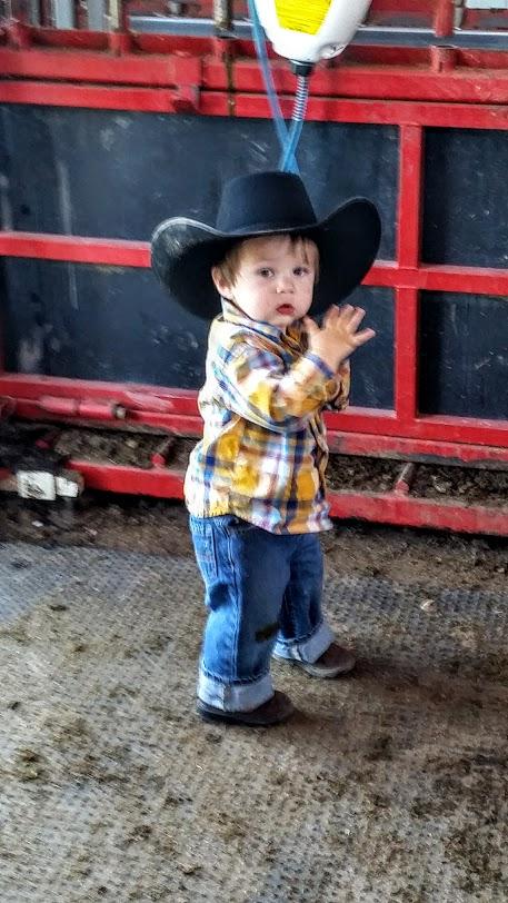 wacey-cowboy-hat-preg-3