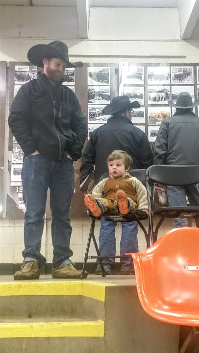 wacey-watching-the-sale-nwss