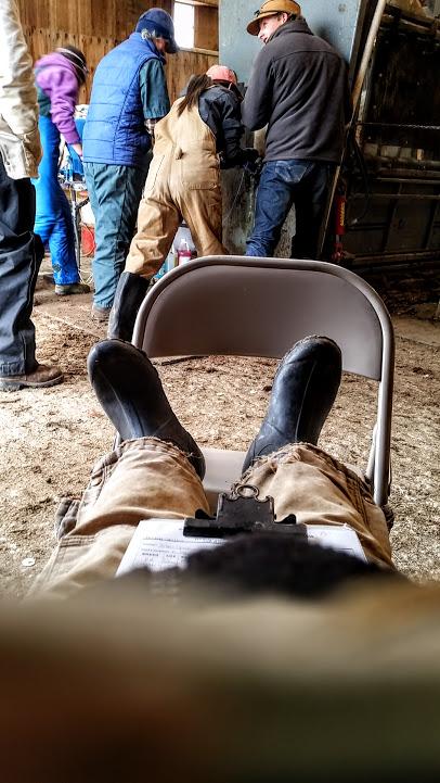 sitting-down-at-barn