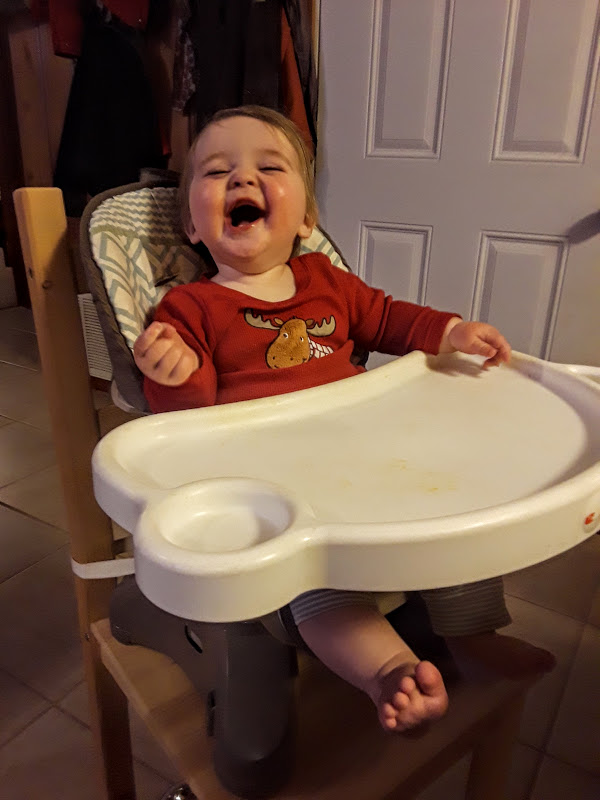 happy Buster high chair