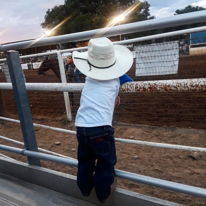Wacey hanging on fence